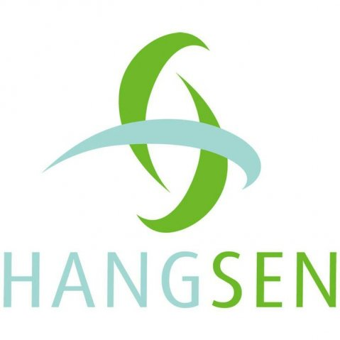 Hangsen Blueberry Flavour Concentrate 30ml